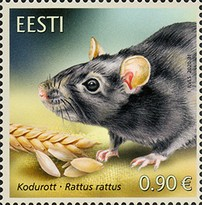 [Fauna - The Black Rat, type BDJ]