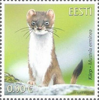 [Fauna - The Stoat, type BEG]