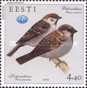 [House and Tree Sparrow, Typ JT]