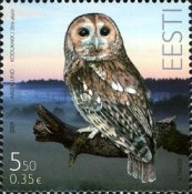 [Bird of the Year - Eurasian Tawny Owl, Typ RU]