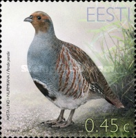 [Bird of the Year - The Grey Partridge, type VR]