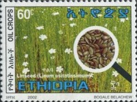 [Oil Producing Seeds, Typ BCF]