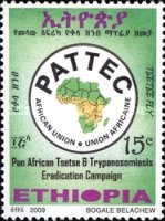 [Pan African Tsetse & Trypanosomiasis Campaign, Typ BFB]