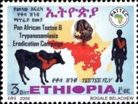 [Pan African Tsetse & Trypanosomiasis Campaign, Typ BFE]