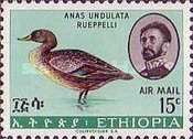 [Airmail - Birds, type QY]