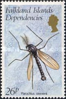 [Insects, type BF]