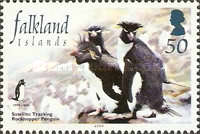 [The 25th Anniversary of Wildlife Conservation in Falklands, Typ AFB]