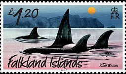 [Marine Life - Whales and Dolphins, type APH]