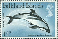 [Dolphins and Porpoises, type HT]
