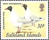 [Gulls and Terns, Typ SK]