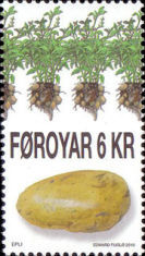 [Flora - Potatoes, type ZN]