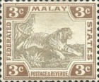 [Tiger - Different Watermark, type C10]