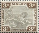 [Tiger - Different Watermark, type C11]