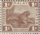 [Tiger - New Colors, type C33]