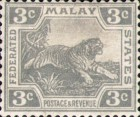 [Tiger - Different Watermark, type C43]