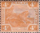 [Tiger - Different Watermark, type C47]