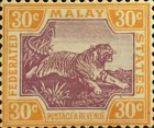 [Tiger - Different Watermark, type C58]