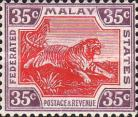 [Tiger - Different Watermark, type C60]