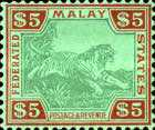 [Tiger - Different Watermark, type C65]