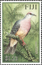 [Pigeons, type AGS]