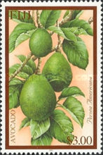 [Tropical Fruit, type AID]