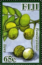 [Fruits of Fiji, type ATB]