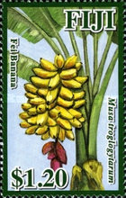 [Fruits of Fiji, type ATC]