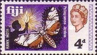 [Local Motives and Queen Elizabeth II, type DR]