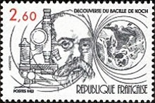 [The 100th Anniversary of the Discovery of Tubercle Bacillus, type BPS]