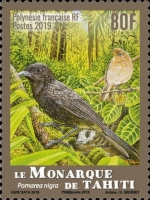 [Endemic Birds, Typ AZM]