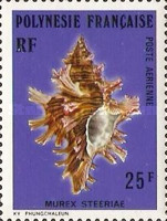 [Airmail - Sea Shells, Typ HM]