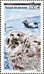 [Weddell Seal, Typ ABN]