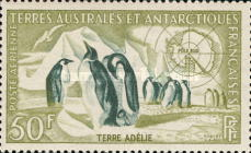 [Penguins, type E]