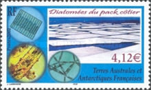 [Diatoms (Microscopic Algae) of the Antarctic Pack Ice, type RD]