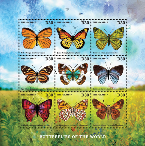 [Butterflies of the World, type ]