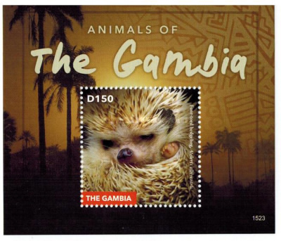 [Animals of Gambia, type ]