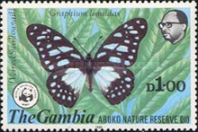 [Abuko Nature Reserve - Butterflies, type HY]