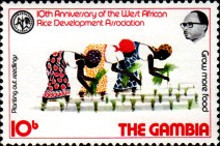 [The 10th Anniversary of West African Rice Development Association, type IV]