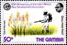 [The 10th Anniversary of West African Rice Development Association, type IW]
