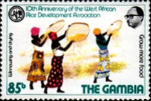 [The 10th Anniversary of West African Rice Development Association, type IX]