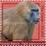 [Definitives - Animals of Gambia, type JLN]
