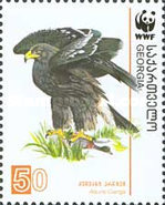 [WWF - Eagles, type UY]