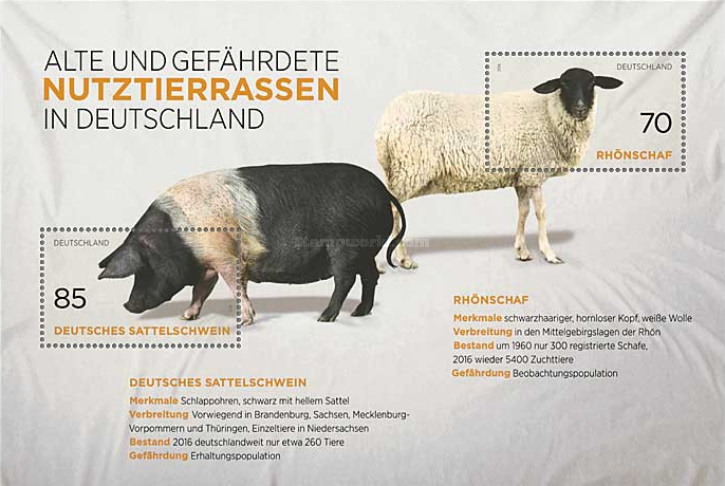 [Old and Endangered Breeds in Germany, Typ ]