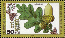 [Charity Stamps - Forest Fruits and Nuts, type AEI]