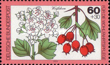 [Charity Stamps - Forest Fruits and Nuts, type AEJ]