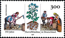 [The 350th Anniversary of the Potato Production in Germany, type BND]