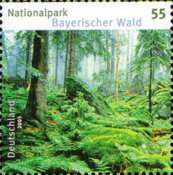 [German National Parks - Bavarian Forest, type CFY]