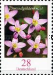 [Flowers - European Centaury, type DAC]