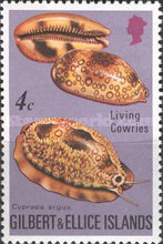 [Cowrie Shells, type GL]