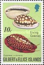 [Cowrie Shells, type GM]